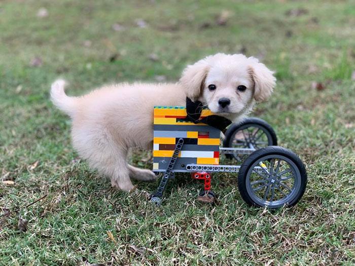 Criança cria cadeira de rodas em LEGO