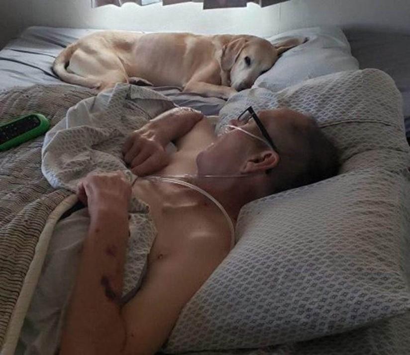 Cão morre uma hora depois do dono